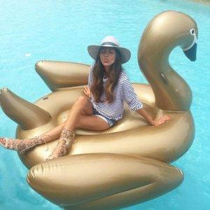 boia cisne dourado